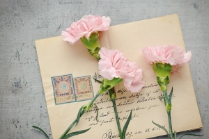 カーネーションと手紙